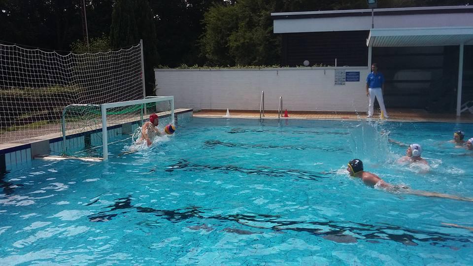 Wasserballer Weiter Auf Erfolgswelle
