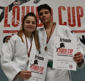 Judoka des PSV heimsen Medallien ein