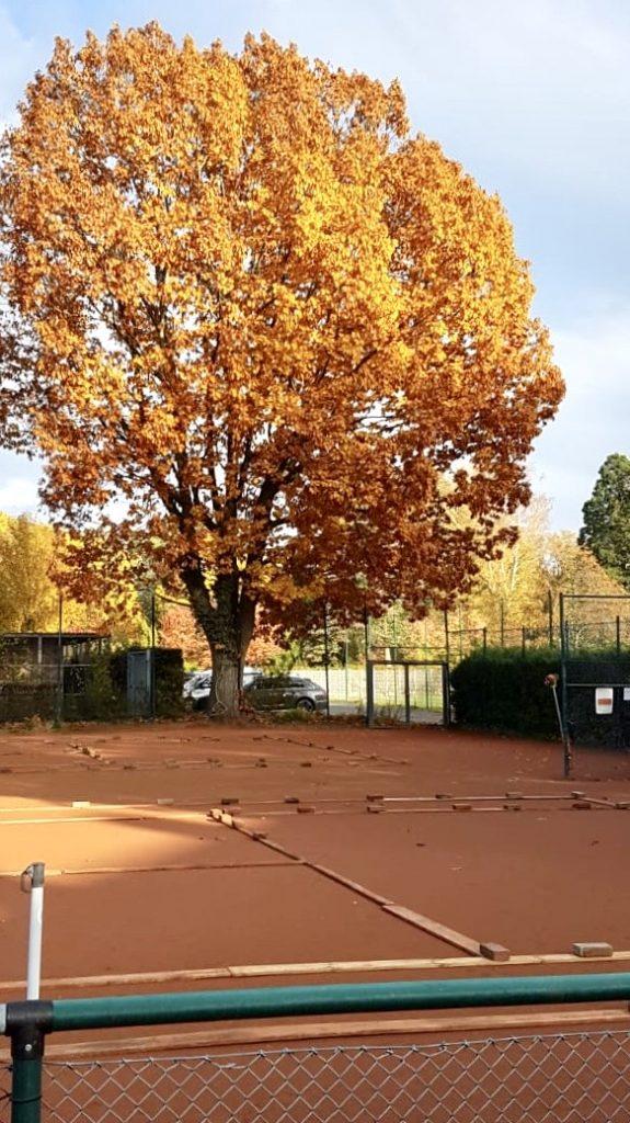 Ende der Tennissaison 2020